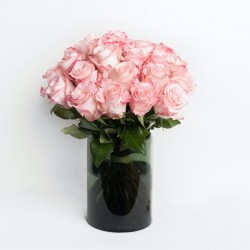 Le Roses - Pink